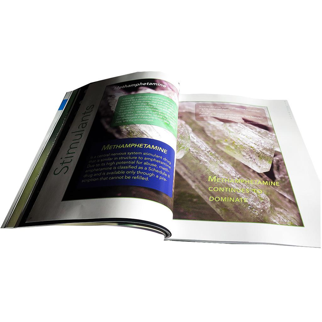 Drug Identification Guide (2016)