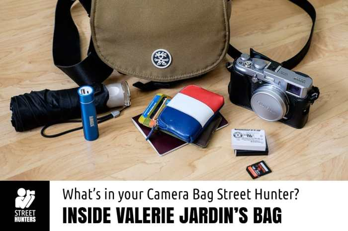 Valerie Jardin's Camera Bag