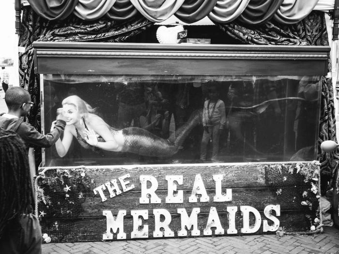 """""""The Real Mermaids"""" by Andrew Sweigart"""
