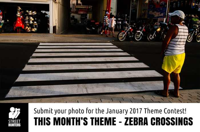 Monthly Theme Contest - Zebra crossings