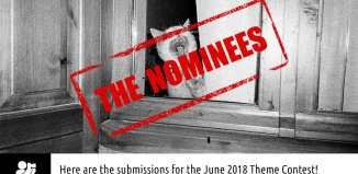 "June 2018 monthly theme contest ""Animals"" nominees"