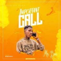 HOT BANG: Mr Bee – Important Call