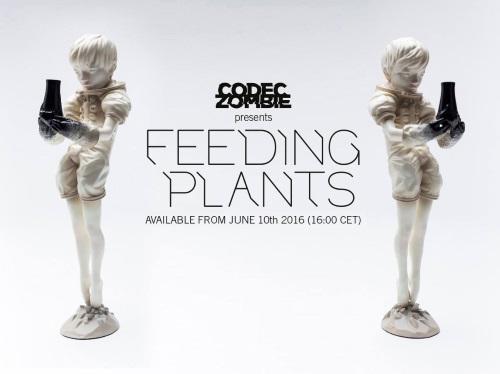 feeding plants