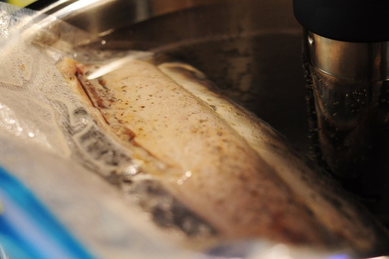 Sous Vide Mackerel Fillets