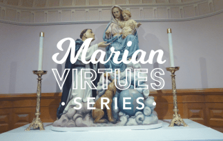 Marian Virtues Series: Gratitude & Grand Prize Giveaway