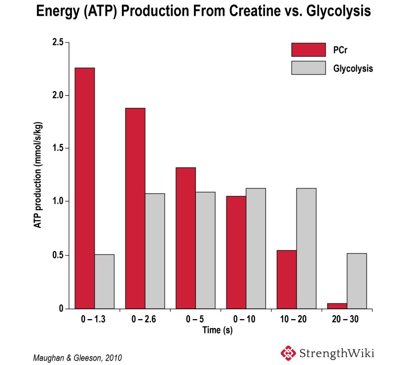 Energy-ATP-production-from-creatine-vs-glycolysis