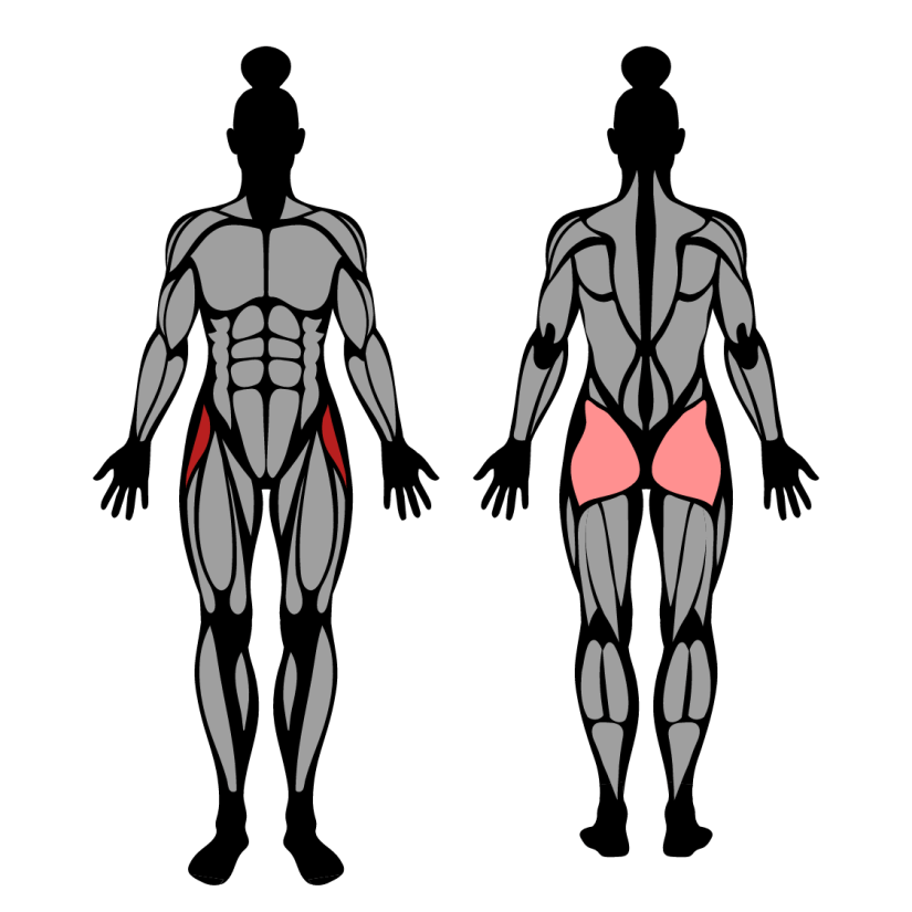Muscles worked by lateral walk with band