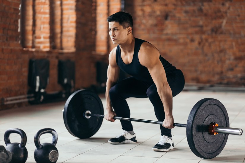 Beginner barbell workout