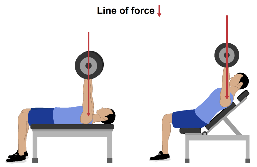 Incline bench press vs flat bench press line of force