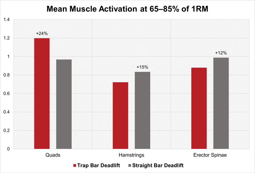 Trap Bar Deadlift vs Straight Bar Deadlift muscle activation
