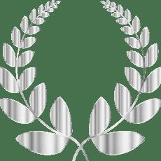 HR VOTY 2017 Singapore Best Psychometric Testing Provider