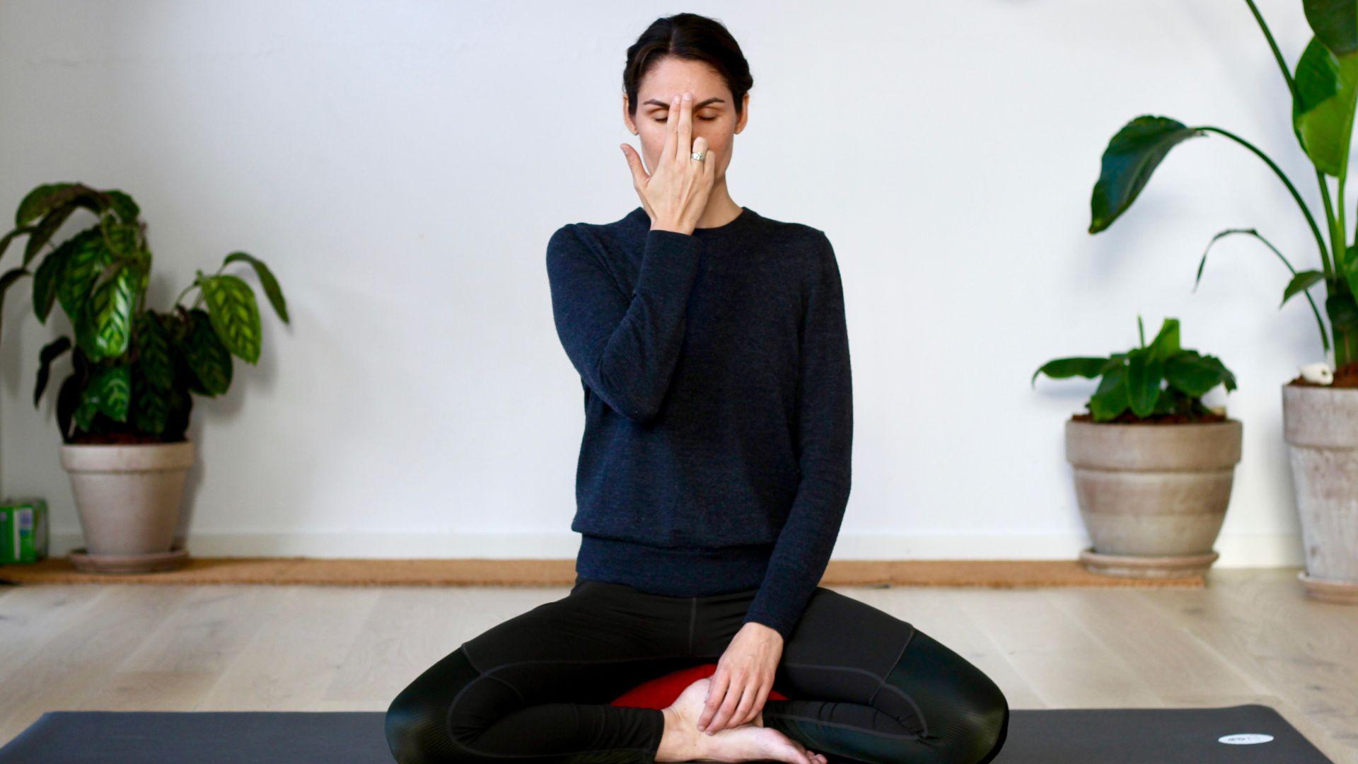 Har du prøvet meditation?