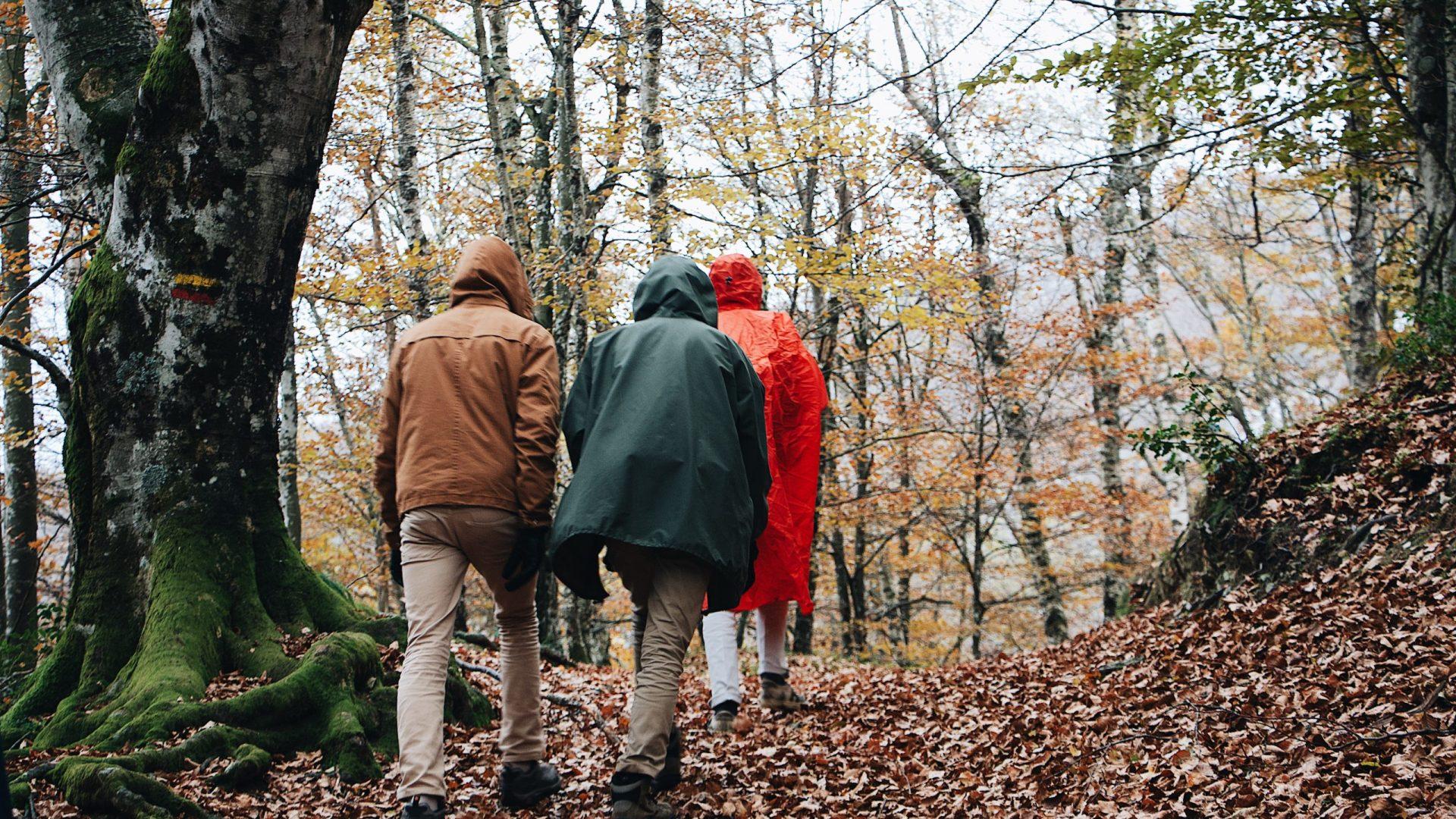 Walk And Talk-grupper