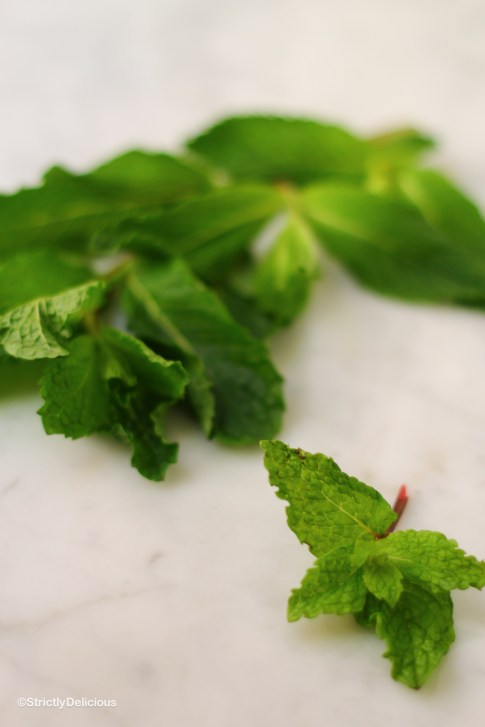 How to Become a Better Cook: A guide to Fresh Herbs   Mint
