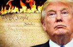 Donald Trum - Burn the Constitution