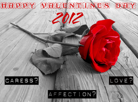 Valentine's Day 2012 Ideas
