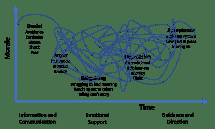 Grief Model for Chronic Pain