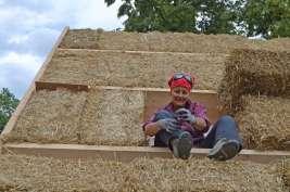 strawbalehouse-ernstbrunn-roof-infill-12