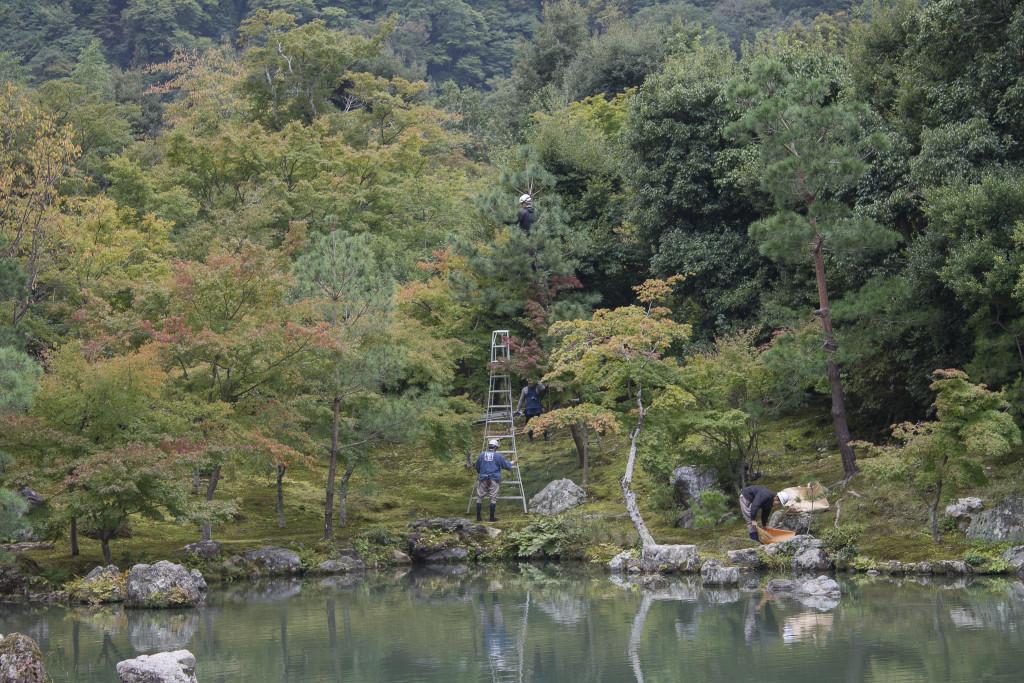 tenruji garden