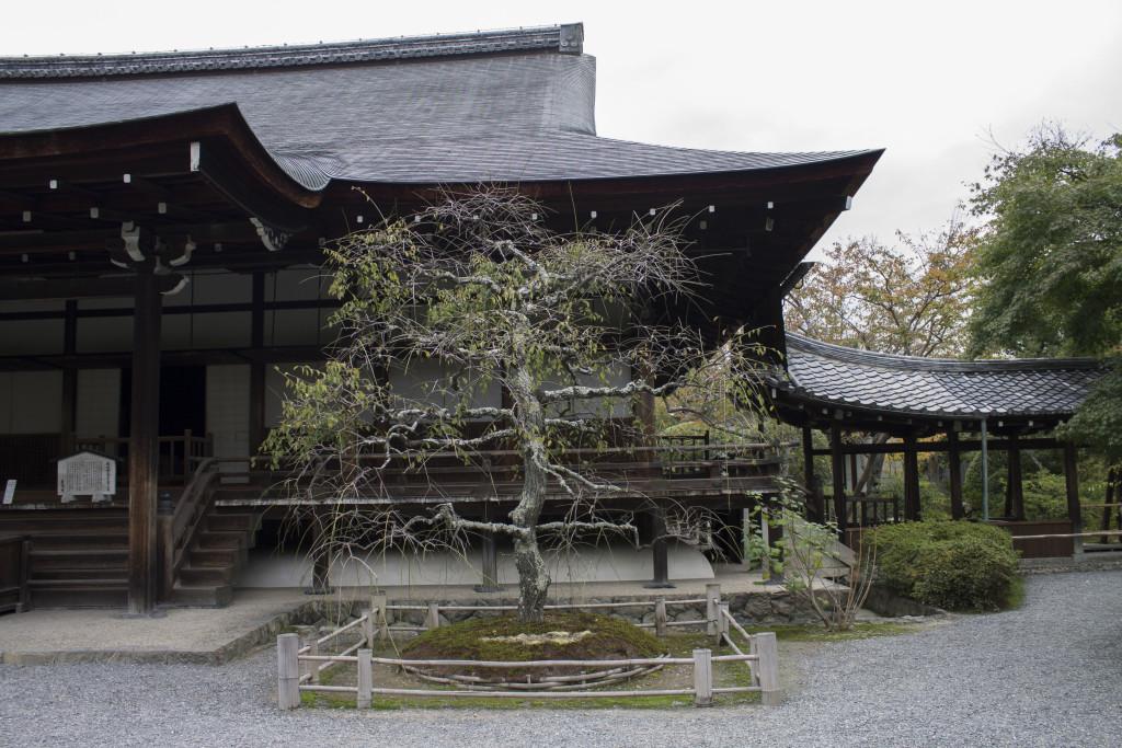 Tenruji