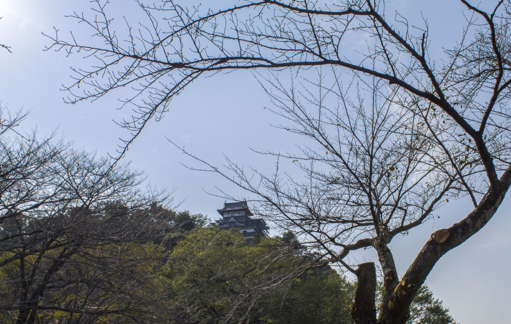 Inuyama Castle from below