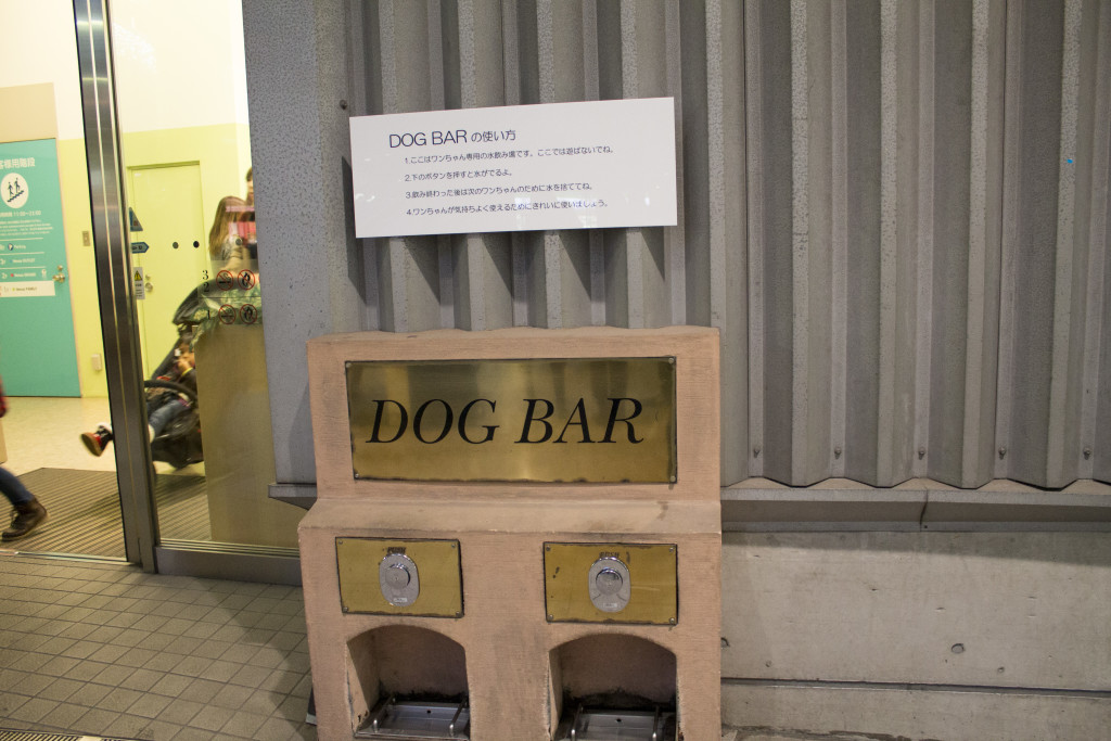 Dog bar Venus Fort Odaiba