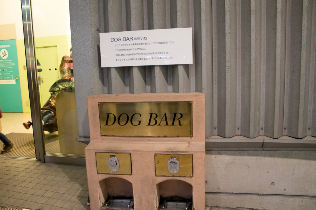 Dog bar Venus Fort Odaiba