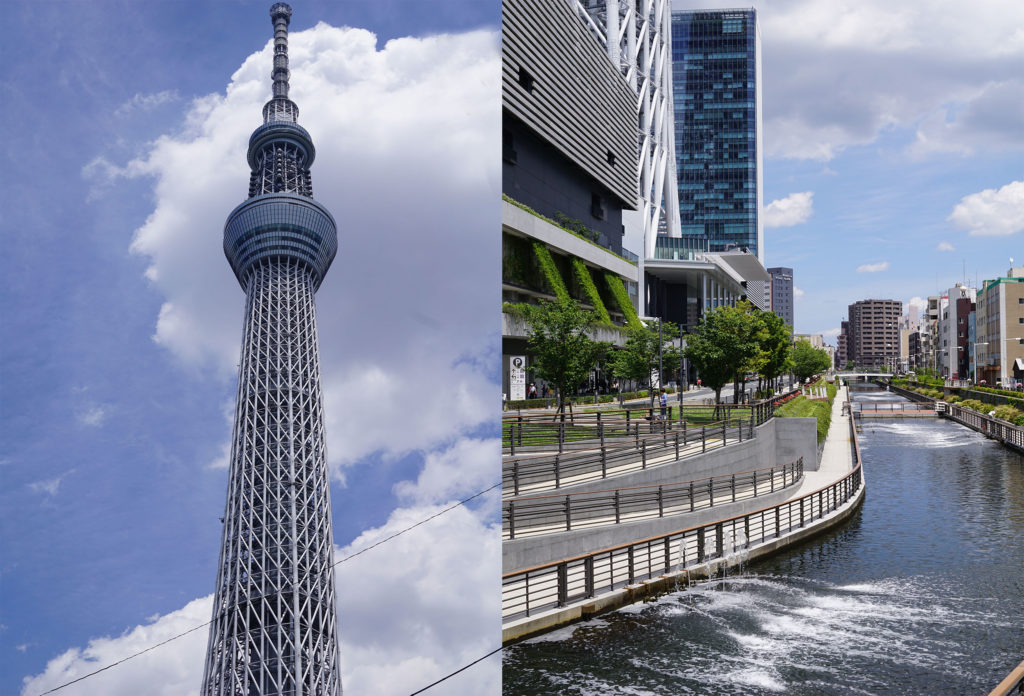 Skytree area