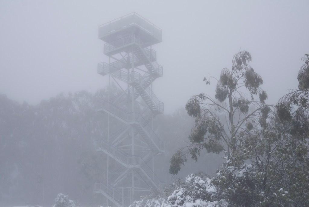 Mount Donna Buang lookout tower