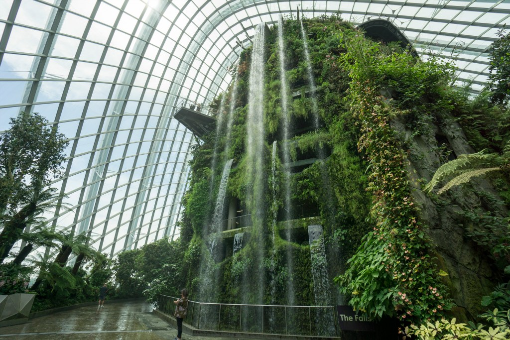 Waterfall in the cloud forest Singapore