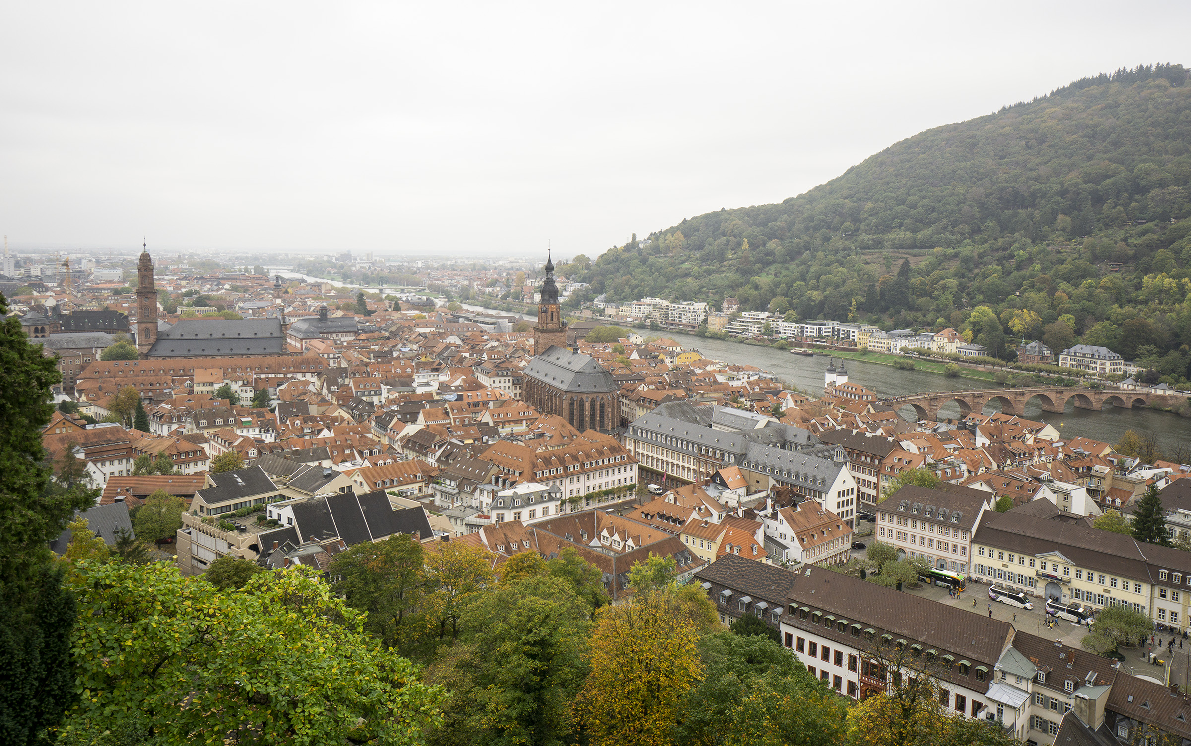 View over the town from Heidelberg Castle