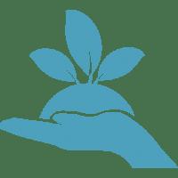 plant-on-a-handg_türkis