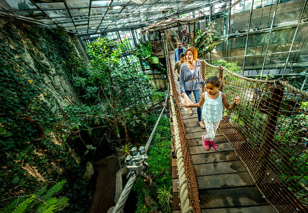 Universeum – Centro de ciencias de Gotemburgo   Stromma.se