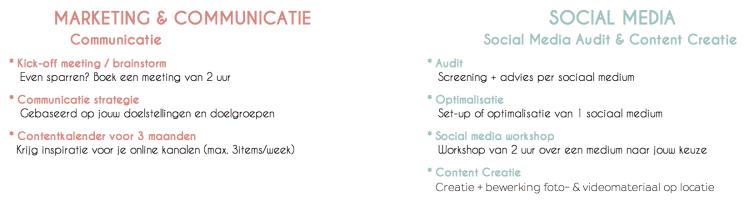 Social Media Management overzicht