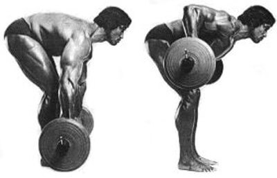 Arnold Did Barbell Rows. Arnold Had Big Pecs. Correlationu003dcausation, Right?