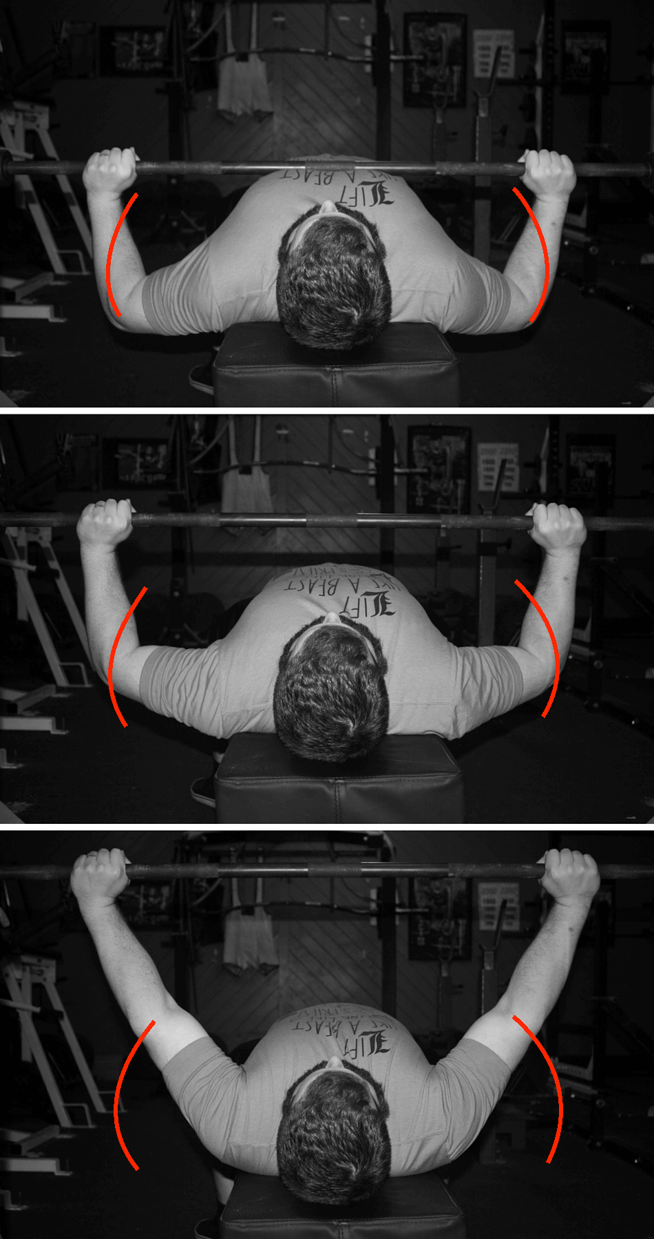 This Is The Path The Elbows Follow In The Bench Press. In The Second Pic