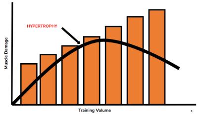 Extreme volume study muscle damage and training volume