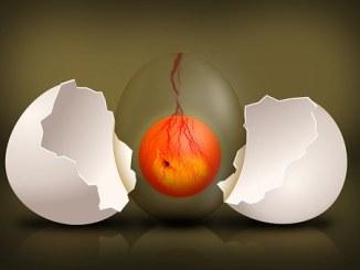 Voodoo egg spell