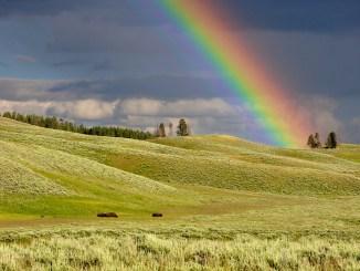 Rainbow spell