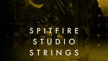 Spitfire Studio Woodwinds Professional by Spitfire Audio