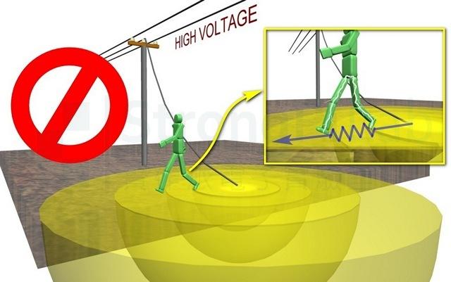 靠近高壓落點的 步間電壓 會致命