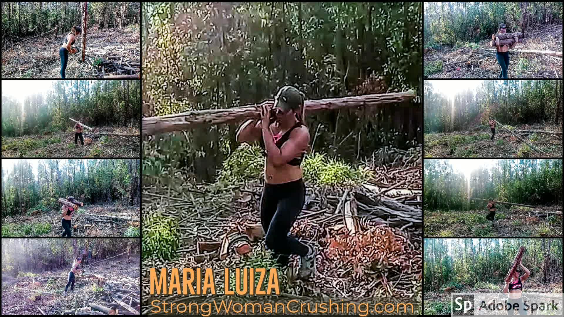 Marialuiza tree lift
