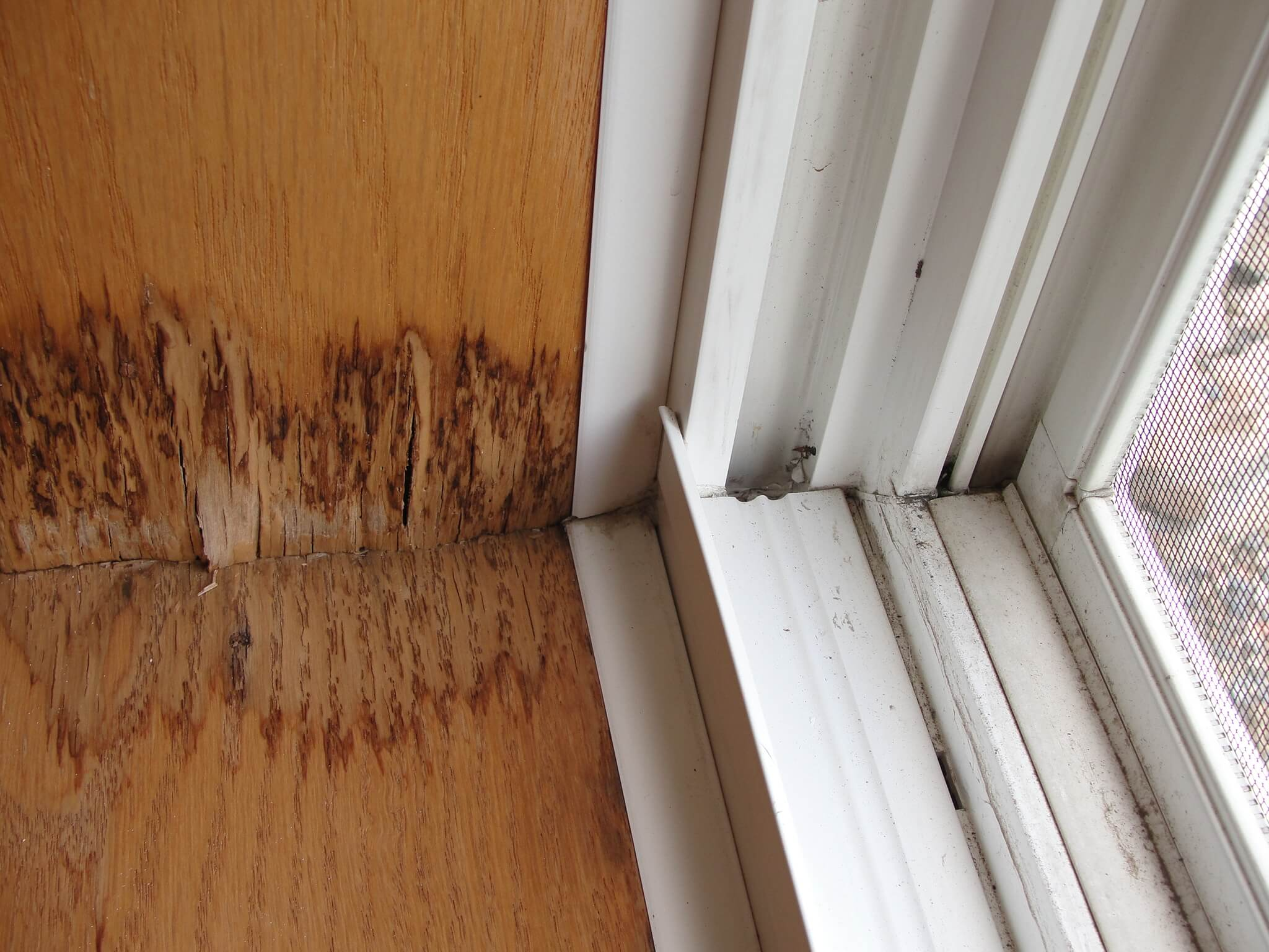 Windowsills And Flashings Montreal Home Inspection
