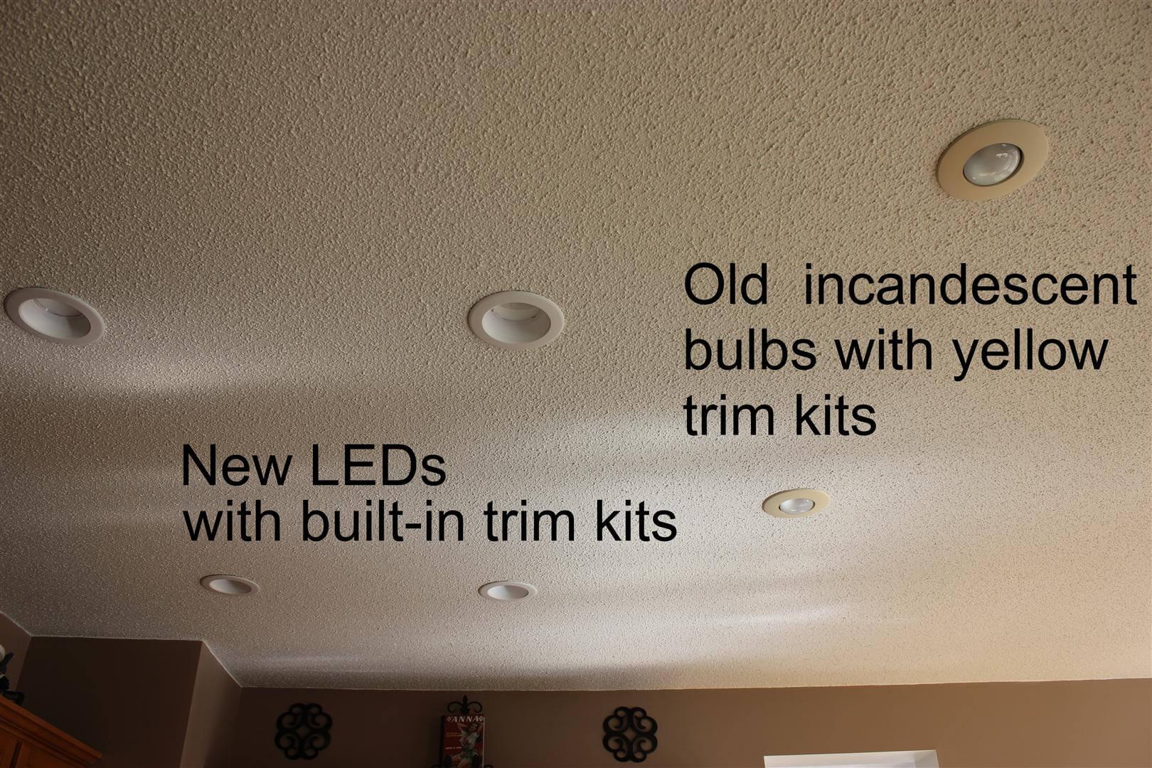 Led Canned Light Bulbs