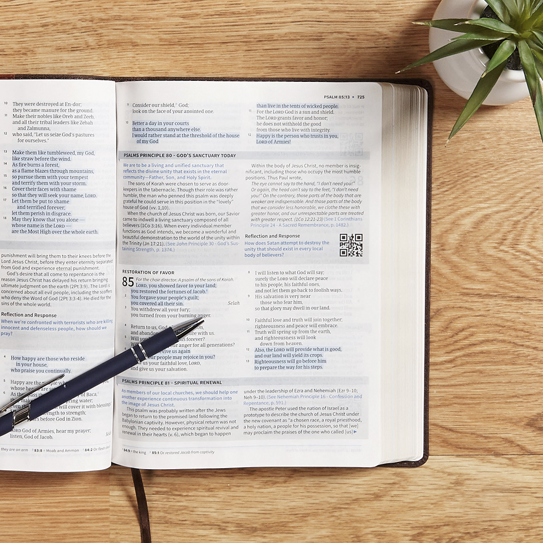 Life Essentials Interactive Study Bible opened to page 725 with a pen resting on top of it.