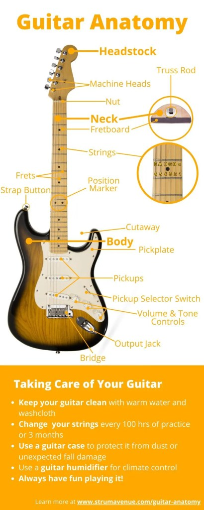 What You Should Know About Guitar Anatomy   Diagrams