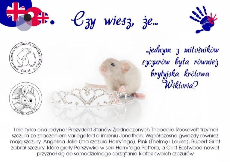 Víteže-ViktorkaPL-768x543