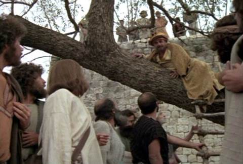 Image result for jesus zacchaeus