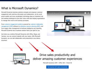MS Dynamics advert
