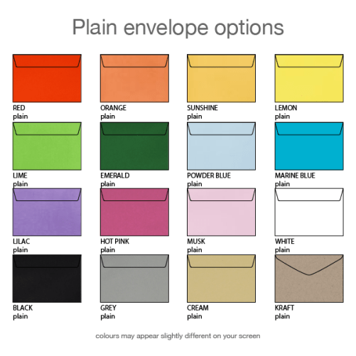 plain envelope options